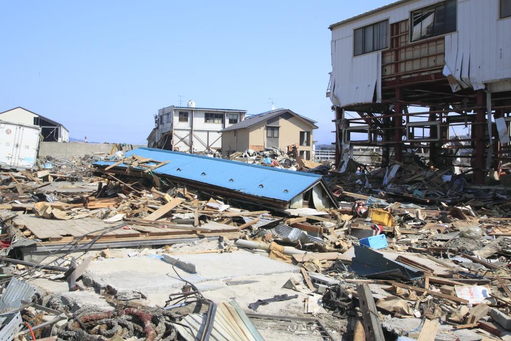 ペット防災|猫の防災対策Vol.2【避難編】もし大地震が起きたときは画像3
