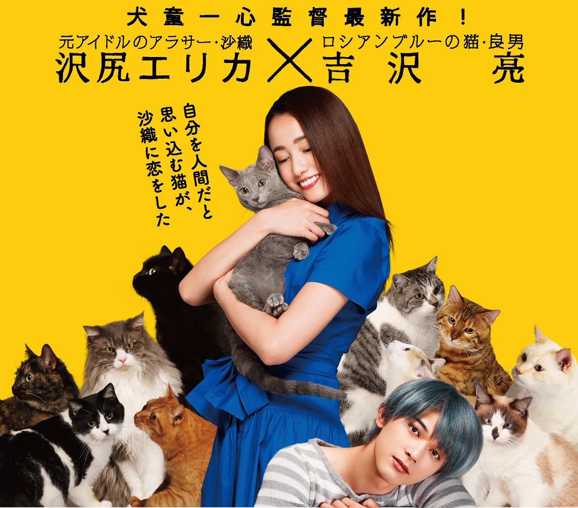 沢尻エリカ×猫主演映画「猫は抱くもの」最新特報映像も公開