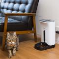【留守番も安心!】猫用自動給餌器 10選!おすすめ人気ランキングと選び方