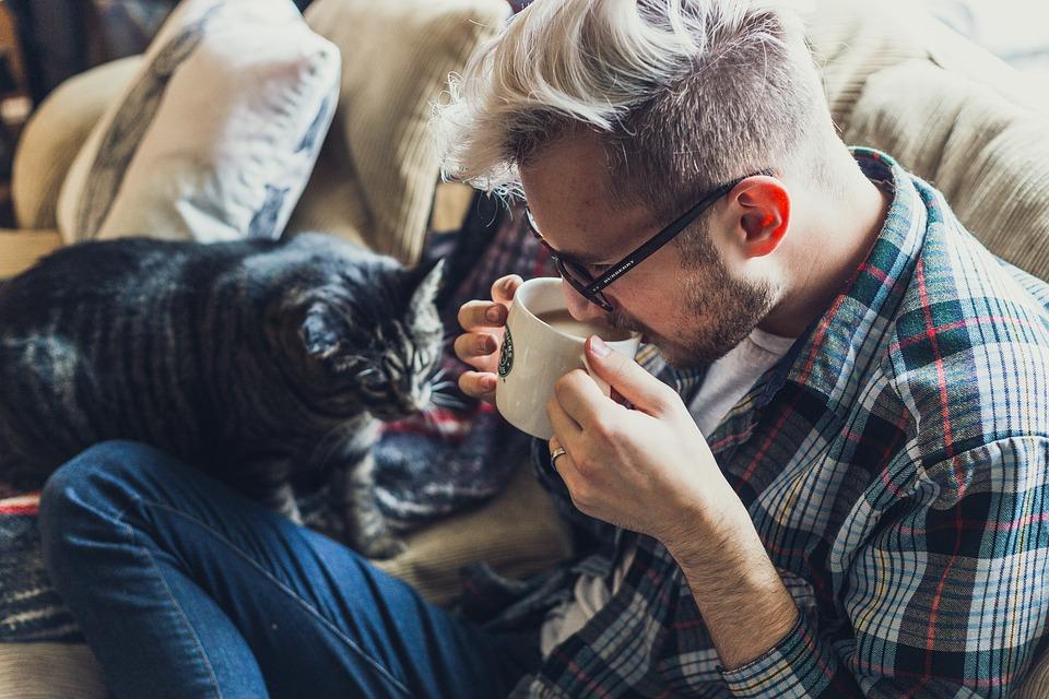 猫が噛む2